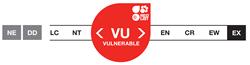 Vulnerable - VU - Vulnérable