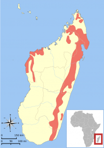 Par IUCN Red List of Threatened Species, species assessors and the authors of the spatial data., CC BY-SA 3.0, https://commons.wikimedia.org/w/index.php?curid=12634770